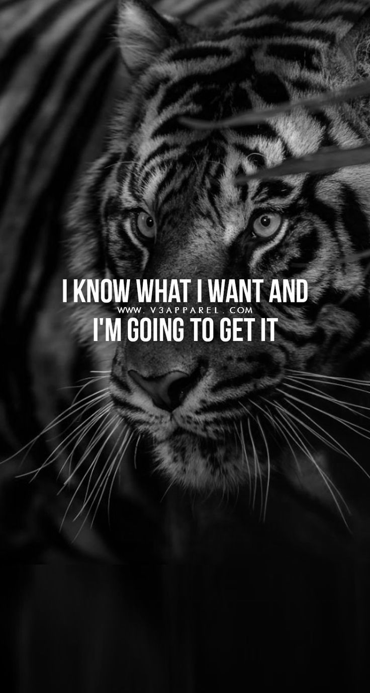 Free Motivational Fitness & Life Phone Wallpapers -  Do not give up ! Fitness sayings to motivate yo...