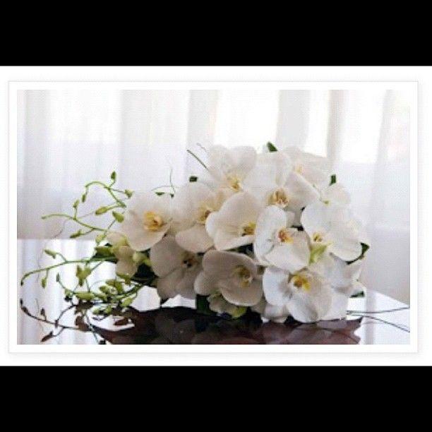 Wedding Weddingbouquet Weddingflowers Orchids Httpwww