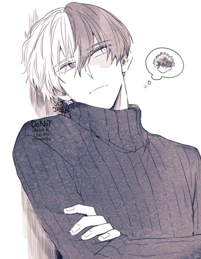 Character: Todoroki Shouto
