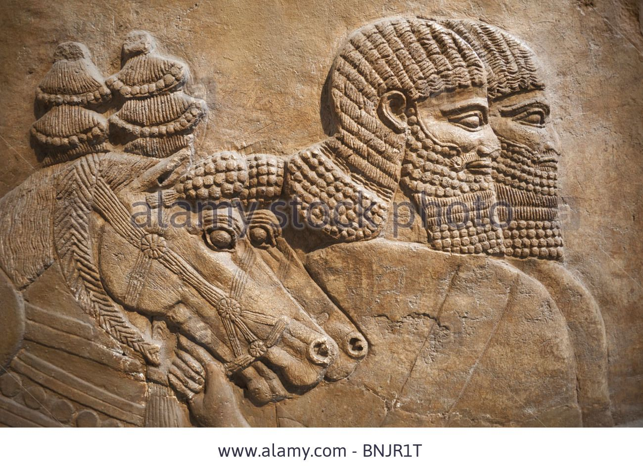 Assyrian Nimrud Relief Frieze With Horses