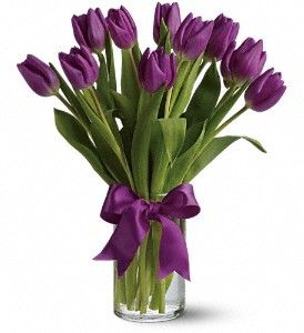 Passionate Purple Tulips In Groton Ma Lavender With Images Purple Tulips Tulips Flowers Easter Flowers