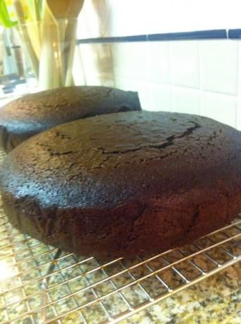 Moist and Rich Homemade Chocolate Cake Recipe Delicious