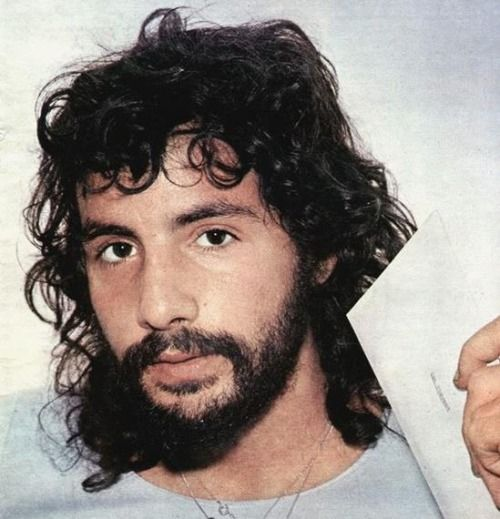 cat stevens - the wind