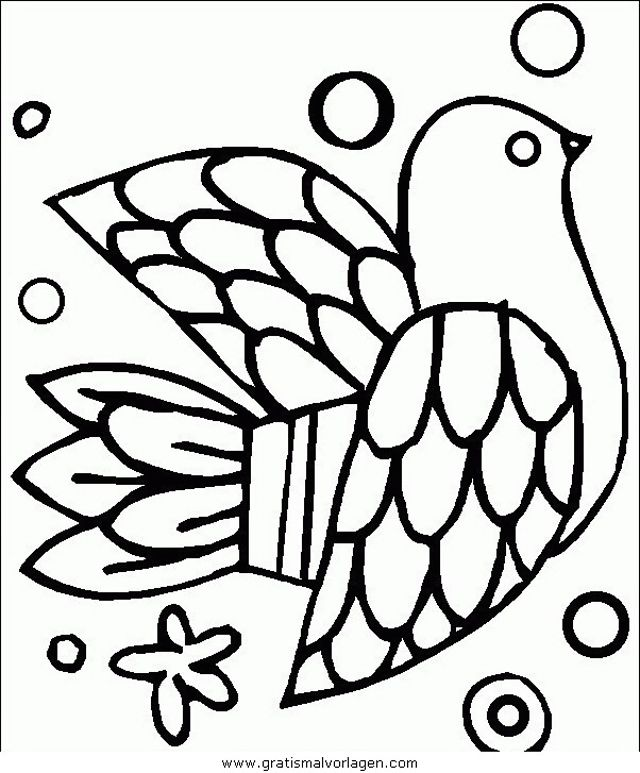 verschiedenevogel048 in tiere gratis malvorlagen