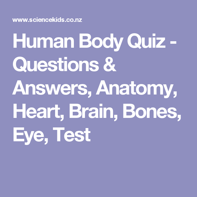 Human Body Quiz - Questions & Answers, Anatomy, Heart, Brain, Bones ...