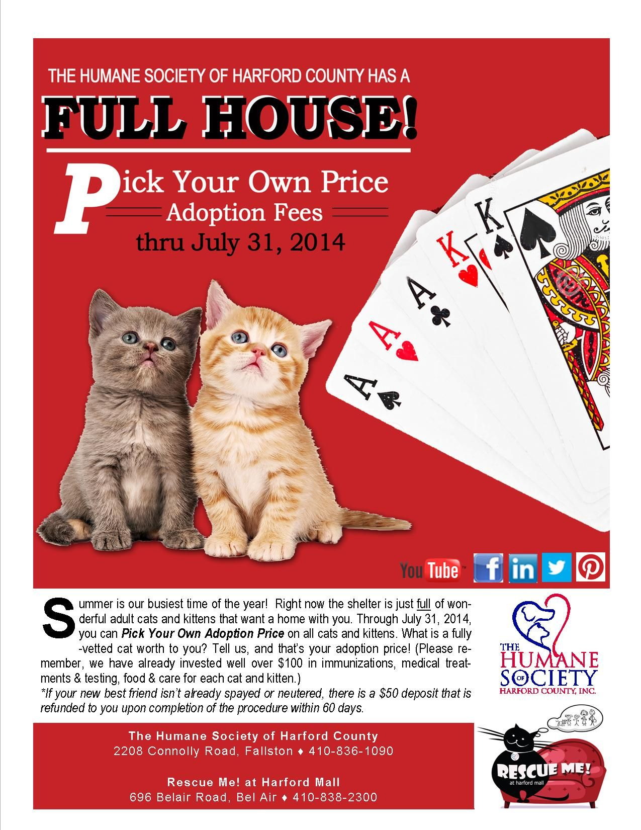 Now thru July 31, 2014 visit the shelter or our cat