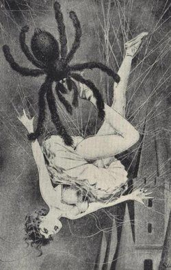Spider Web  / Vintage Illustration ( Scary / horror / wierd / strange / creepy )