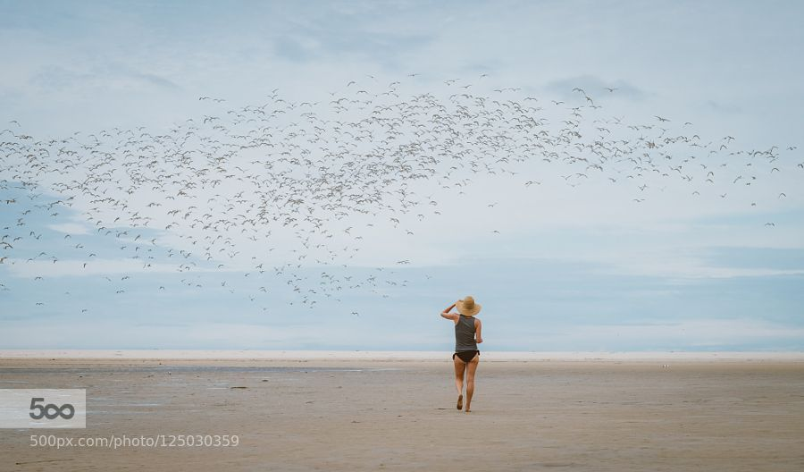 songbird by LaurenRautenbach #Travel #fadighanemmd