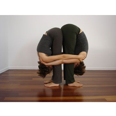 double standing forward bend  couples yoga poses partner
