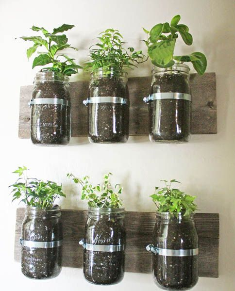 wall garden design ideas diy projects for decorating small spaces with edible herbs