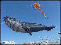 big big kites
