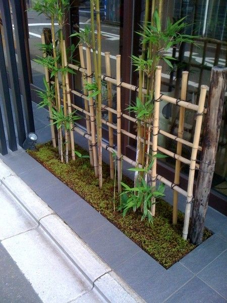 Photo of small space Japanese style garden bamboo fence