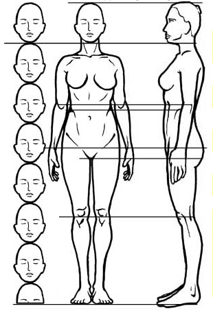 pin by gary on drawings pinterest body proportions drawing