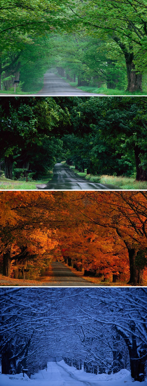 Spring, Summer, Autumn, Winter in Vermont / by Michael