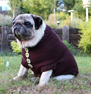 Pug Dog Sweater By Elizabeth Watkins Whatasweetie Free Pattern