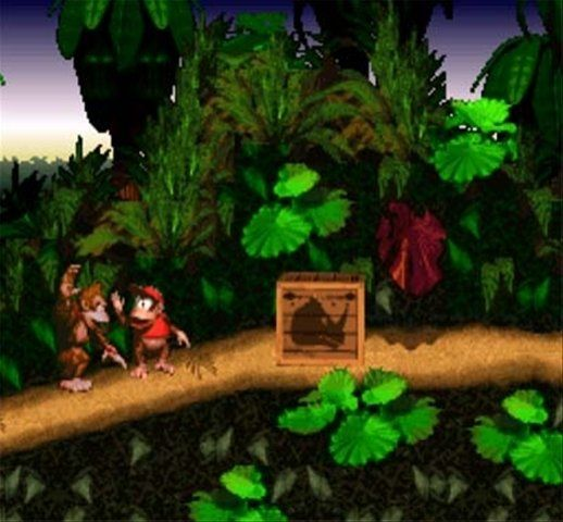Image result for donkey kong country 1994