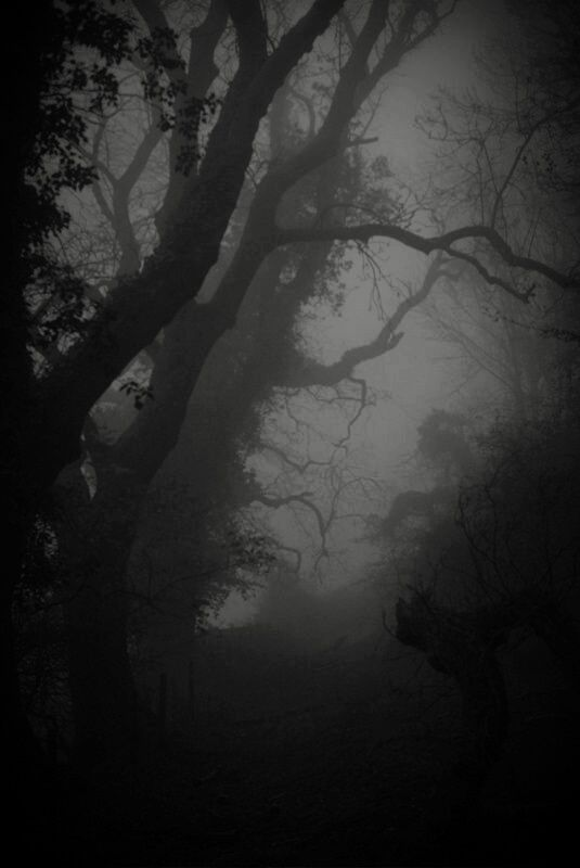 Artizan Dark Photography Dark Places Photography