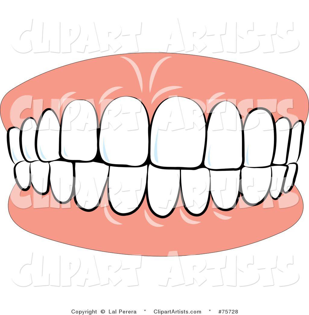 Smile With Teeth Clip Art Google Search Teeth Clip Clip Art Free Clip Art
