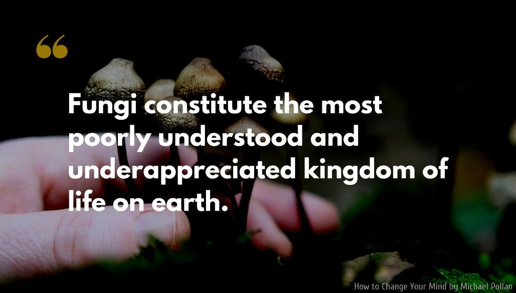 How To Change Your Mind Quote Fungi Constitute The Most Poorly Understood And Underappreciated Kingdom Of Life On Nature Quotes Notable Quotes Profound Quotes