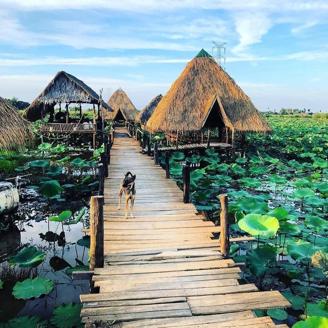 Siem Reap is a popular location in Cambodia due to the Angkor ruins. Here is our list of unusual things to do in Siem Reap Cambodia