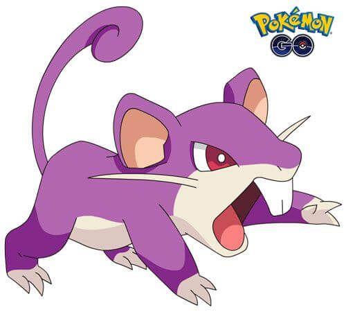 Rattata 1 de Pokémon Go