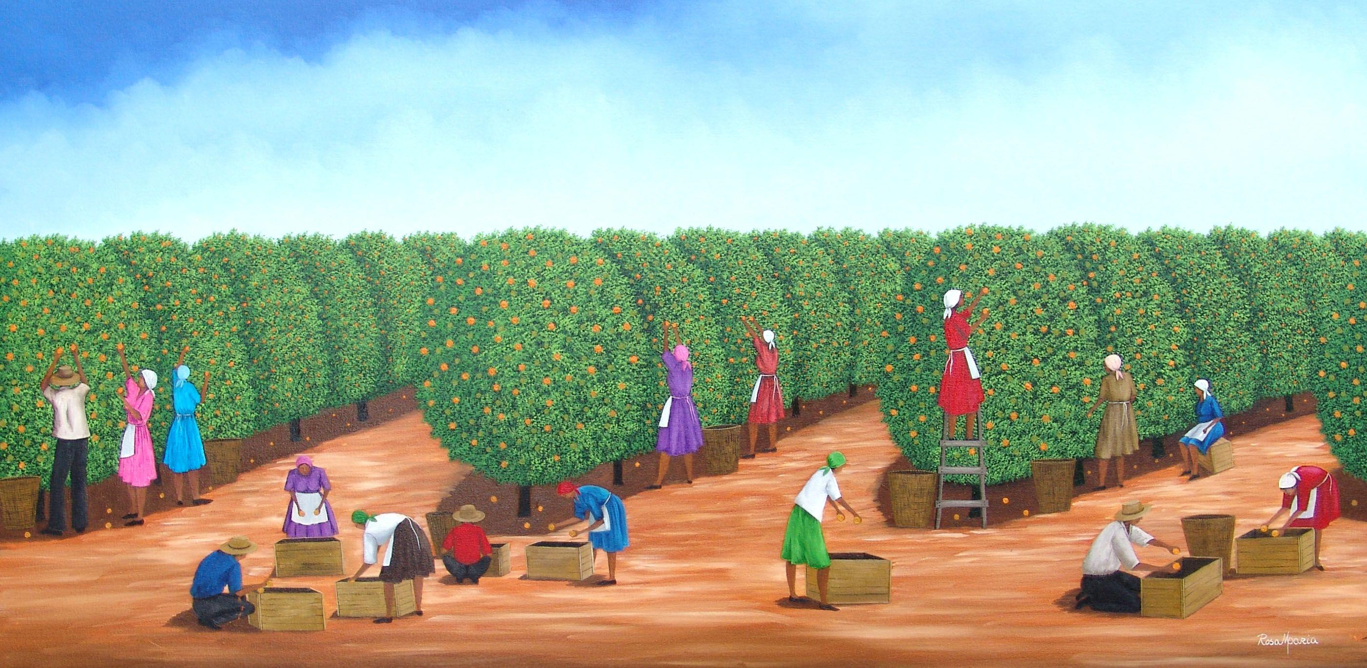 Rosa Maria,colheita de laranjas,50x100 cm,OST,2007
