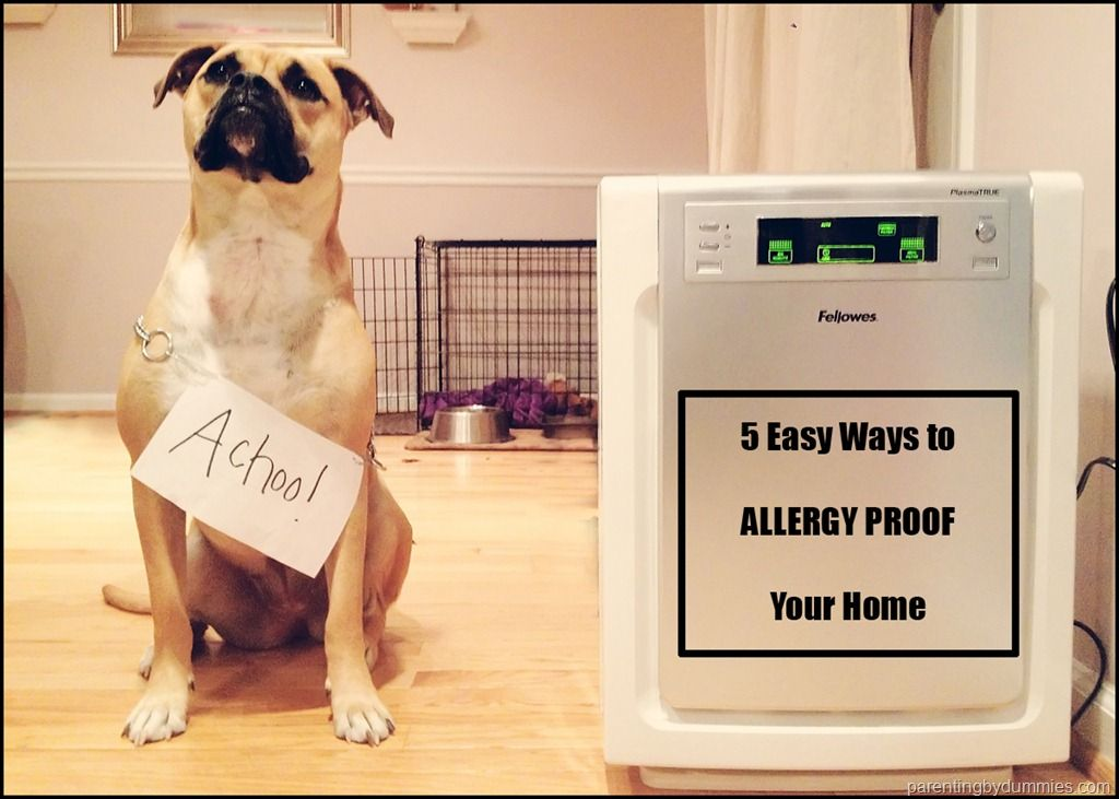 How To Reduce Allergens In The Home