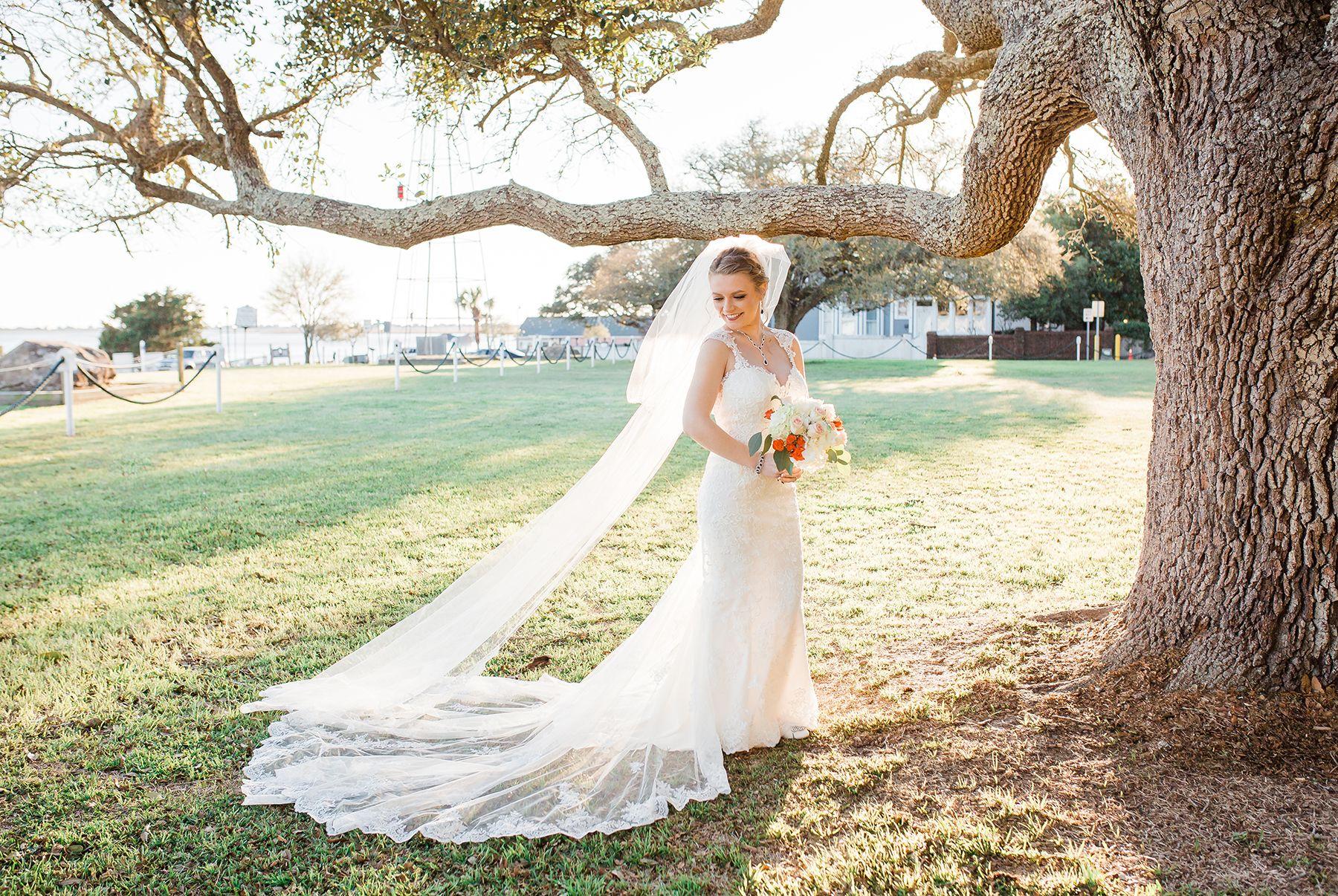 Wedding photo ideas bridal portrait ideas cathedral length veil