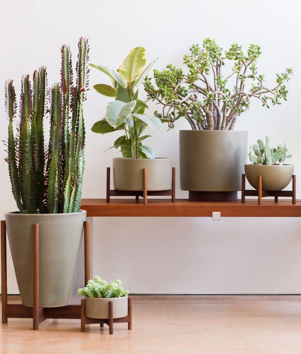 Modernica Case Study Ceramics Planten Planters Interieur