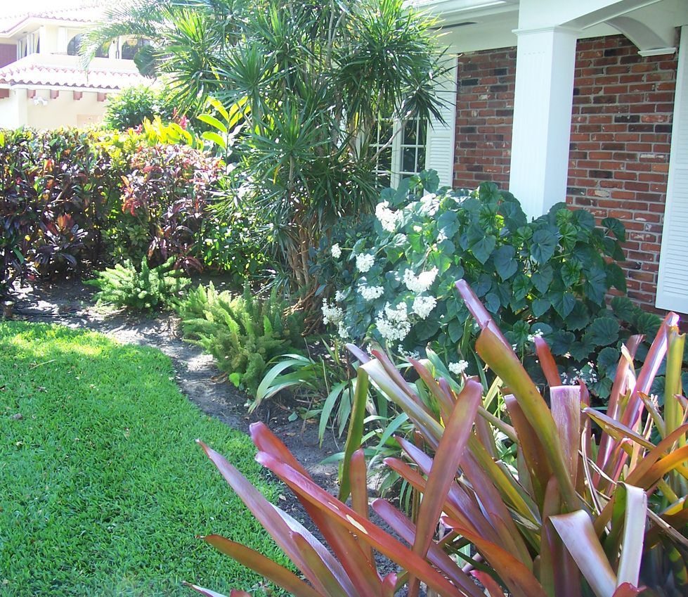 Florida Tropical Landscaping Ideas Front | ... - Landscaping Miami ...