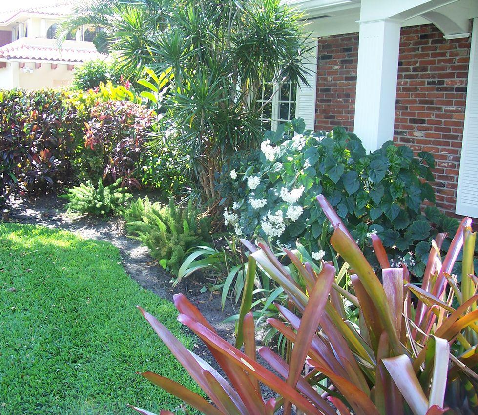Florida Tropical Landscaping Ideas Front | ... - Landscaping Miami,  Landscape Designer Miami
