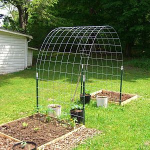 wire fencing arbor for climbing vegetables projects to try pinterest garten garten. Black Bedroom Furniture Sets. Home Design Ideas