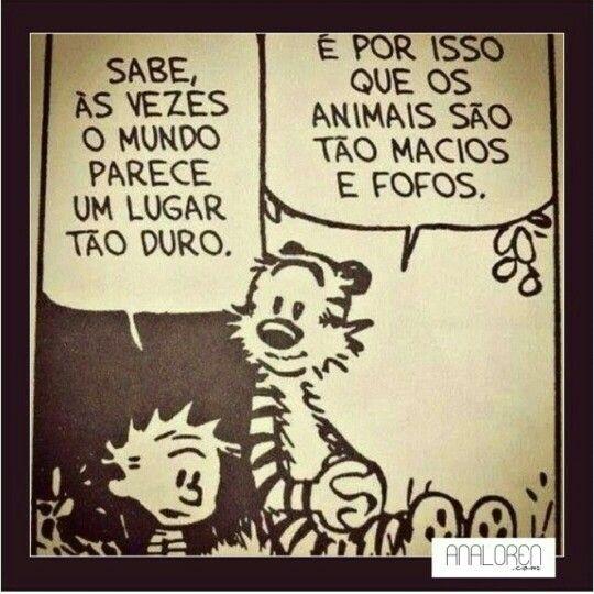Prefiro os animais do que certas pessoas...