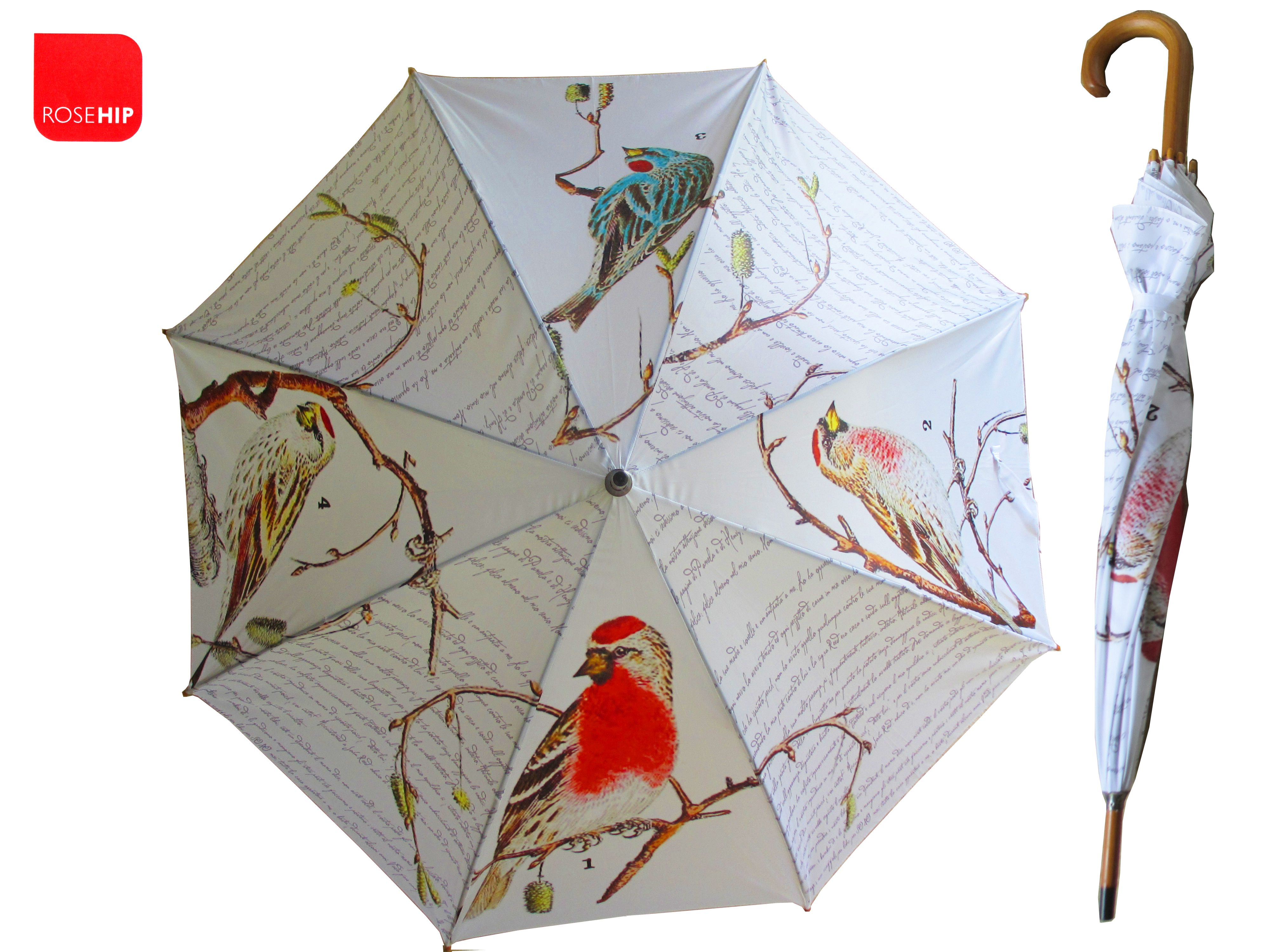 umbrella with birds google search umbrellas or parasols