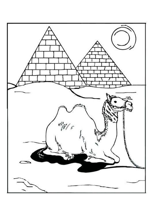 Coloring page Egypt | Kid\'s Study Mid-East/Iran/Saudi Arabia/Iraq ...