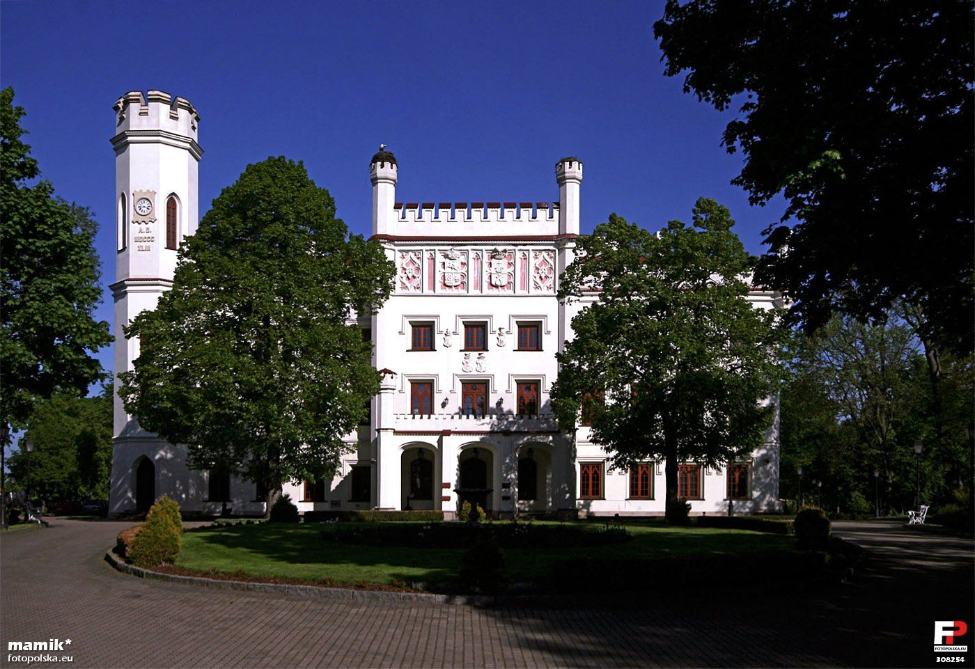 Zamek w Starej Wsi (Polska)