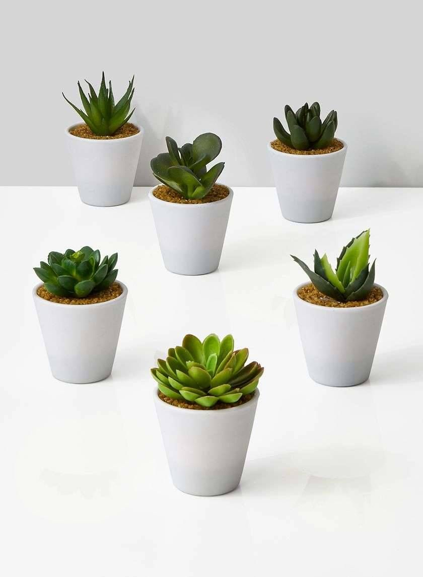 4in White Pot With Succulent Set Of 6 Plant Wall Decor Fake Plants Decor Fake Succulents