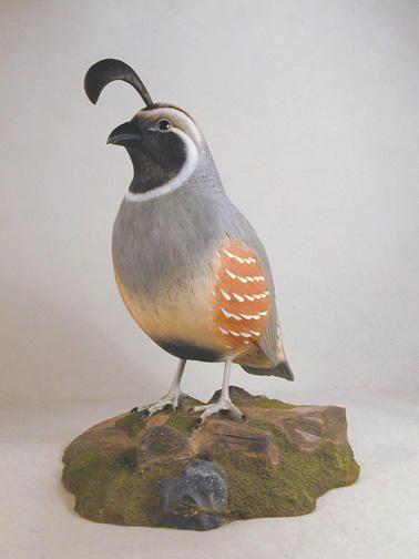 Gambel's Quail Original Wood Carving in Collectibles | eBay