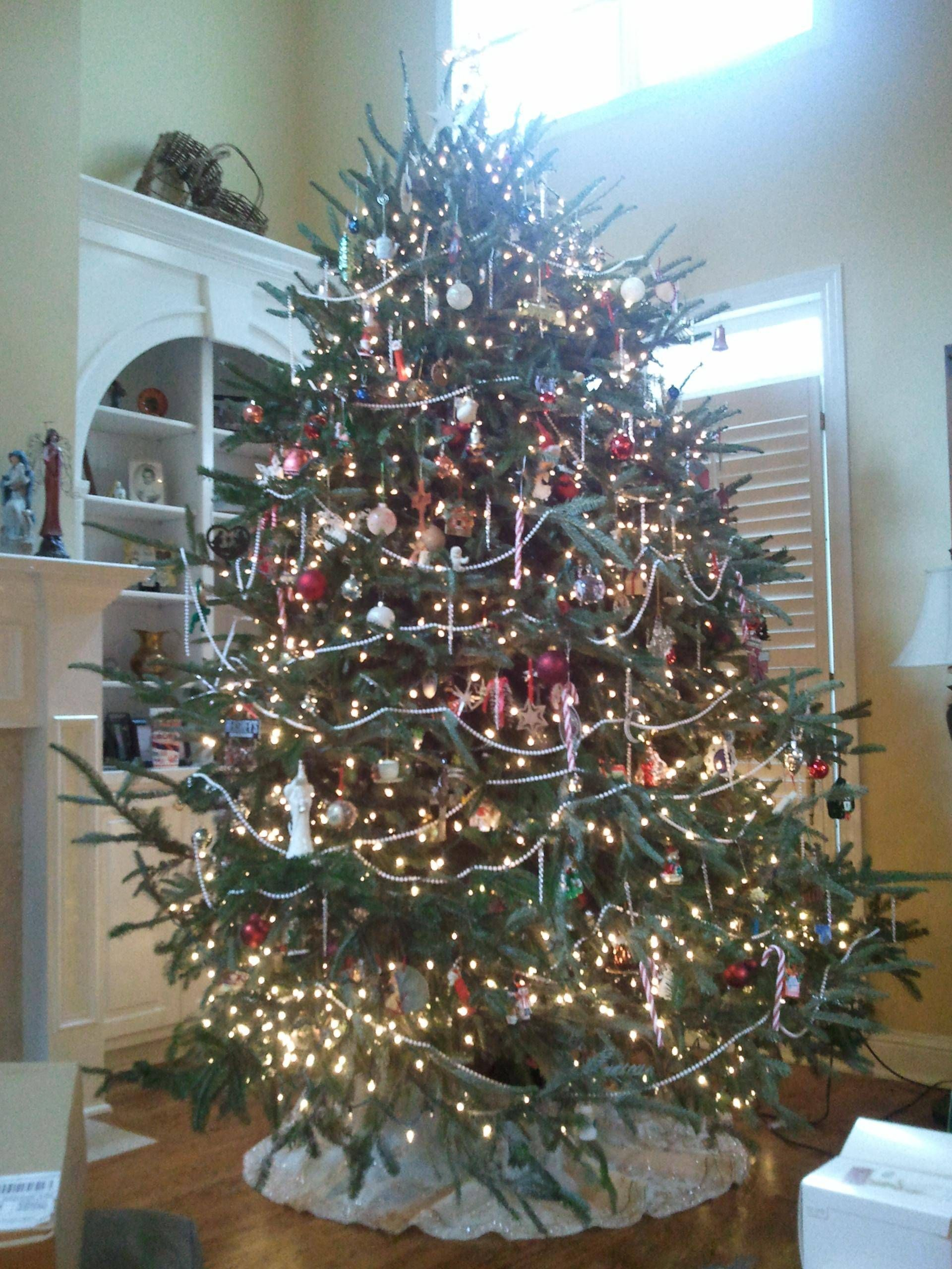 Nothing like a real old fashioned Christmas tree Hmm