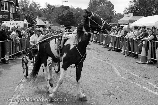 Wickham Horse Fair