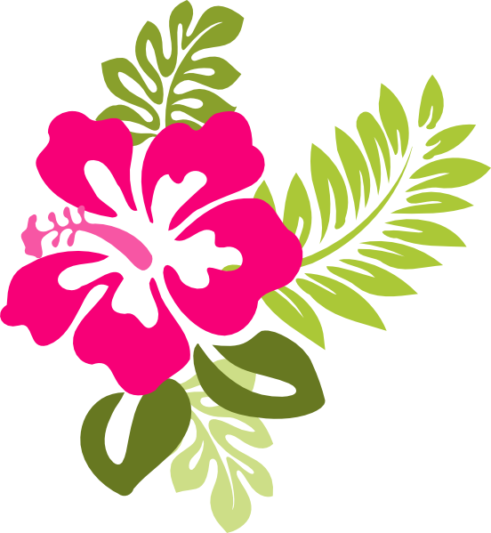 Vector Clip Art Online Royalty Free Public Domain Hibiscus Clip Art Art Drawings For Kids Flower Clipart