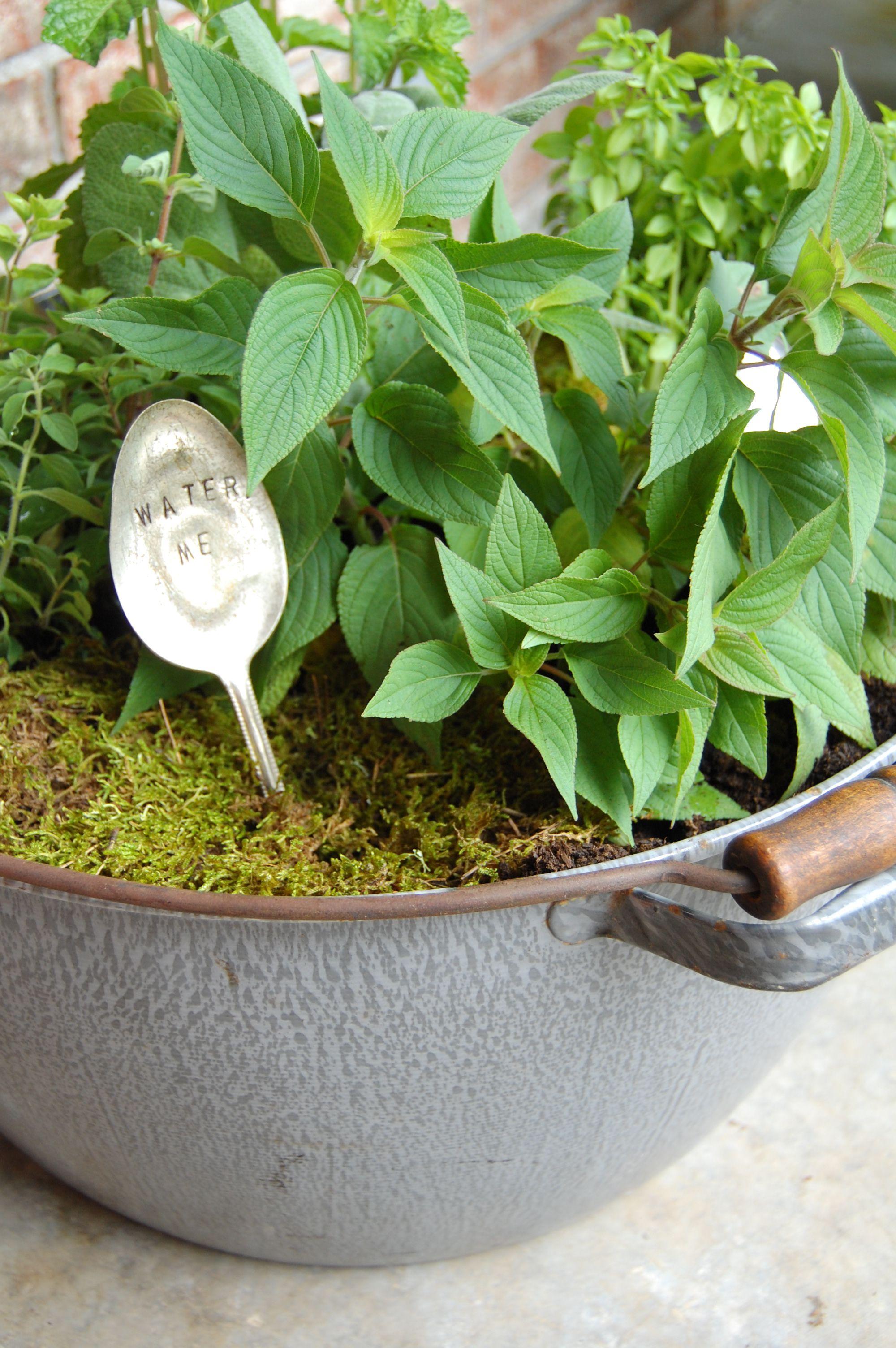 Pallet herb garden Gardens!...and gardening ideas