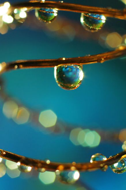 Photographer Unknown Drops Droplets Water Blue Copper Light Water Droplets Pictures Macro Photography