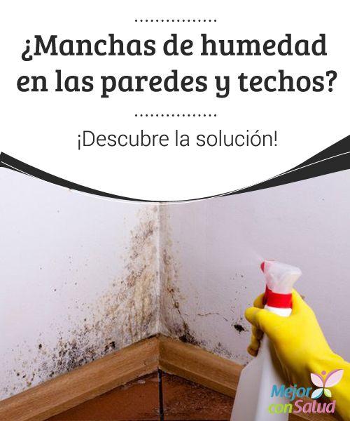Como quitar las manchas de humedad en la pared affordable - Como evitar la humedad en casa ...