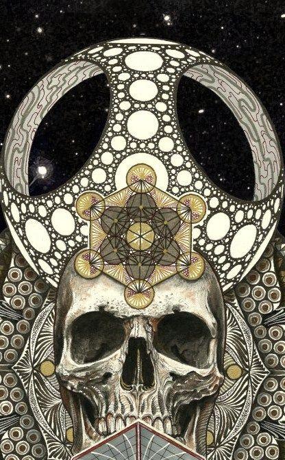 skull art Skull art, Skull design, Skull