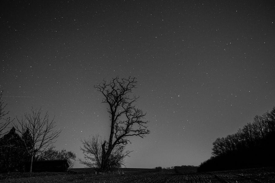 sky full of stars by Hajnalka Farkas