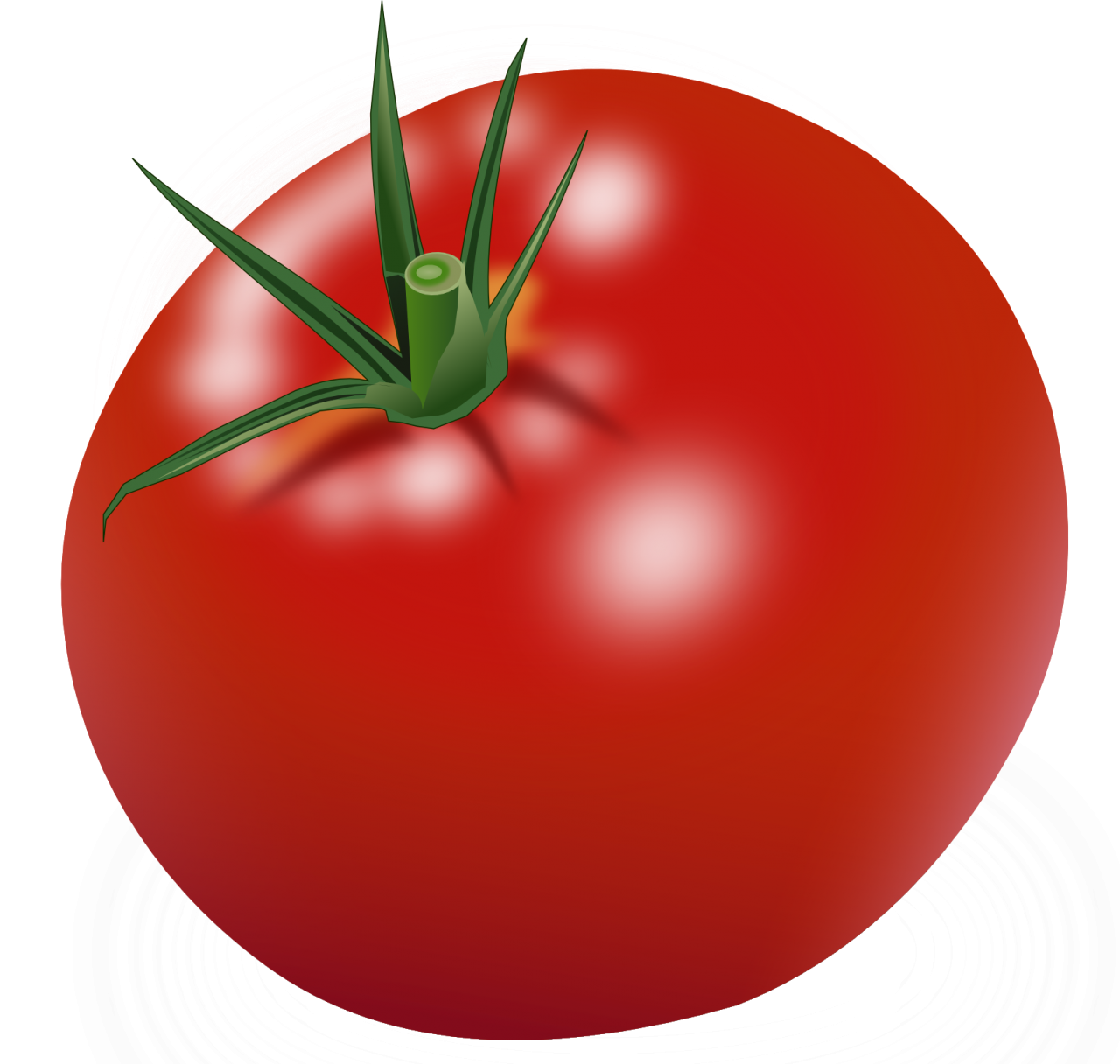 Red Tomatoes Png Image Purepng Free Transparent Cc0 Png Image Library Red Tomato Tomato Red Fruit