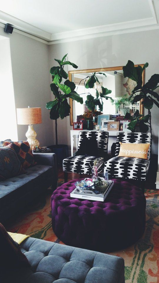 Bola\'s Bright and Airy San Francisco Home — House Call | Apartment ...