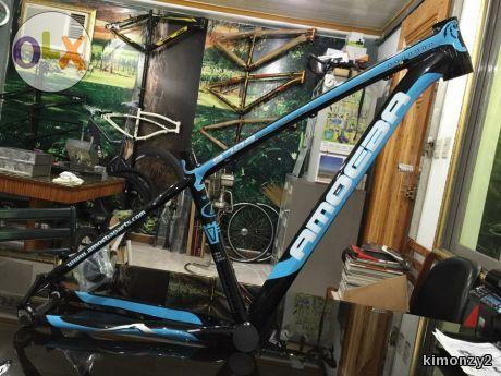 Amoeba 9709 frame 29er size 16.5 | 29er bike frame | Pinterest
