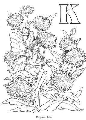 Cicely Mary Barkeru0027s Flower Fairies For You To Color. These Flower Fairies  Were First Drawn By Cicely In 1923.